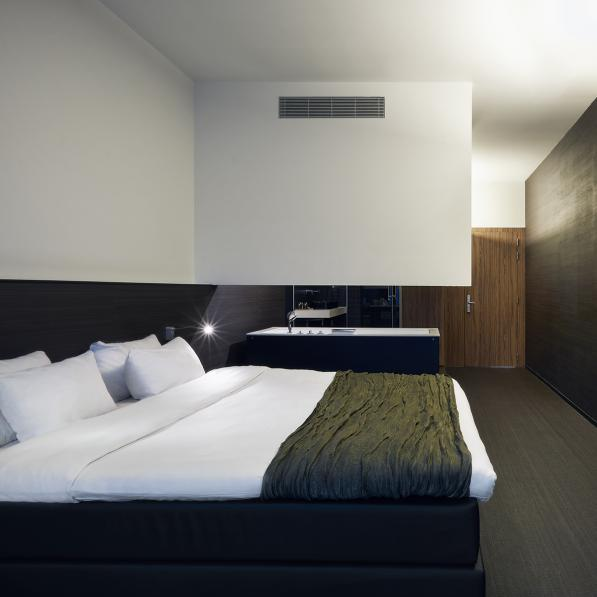 Carbon Style Deluxe room